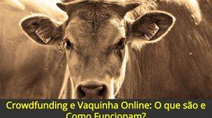 Crowdfunding-e-Vaquinha-Online